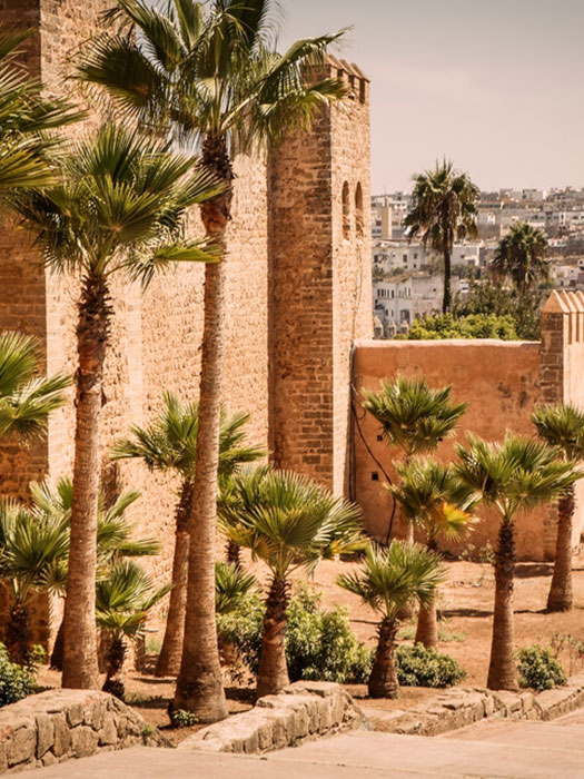Morocco through the lens