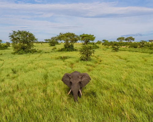 Accommodation –  uganda